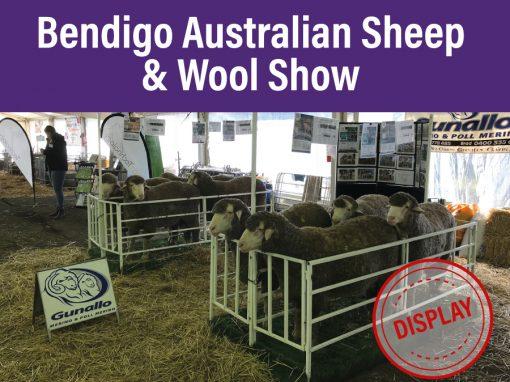 Bendigo Australian Sheep & Wool Show