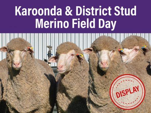 Karoonda & Districts Stud Merino Field Day